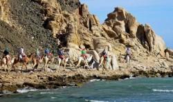 Abu galum and the blue hole safari tour