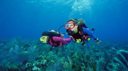 Intro Scuba Dive – Sharm EL Sheikh