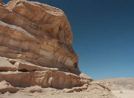 Grand safari in sinai desert
