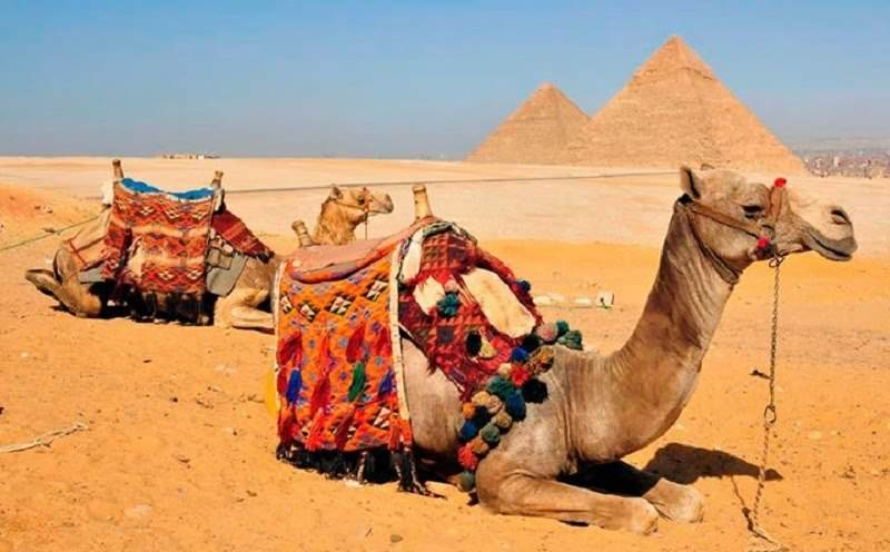 Day-Trip to Cairo by Plane from Sharm el-Sheikh